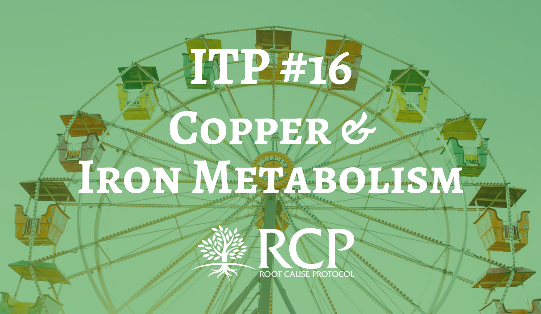 Iron Toxicity Post #16: A 'primer' on the TOTAL relationship of Copper and Iron Metabolism