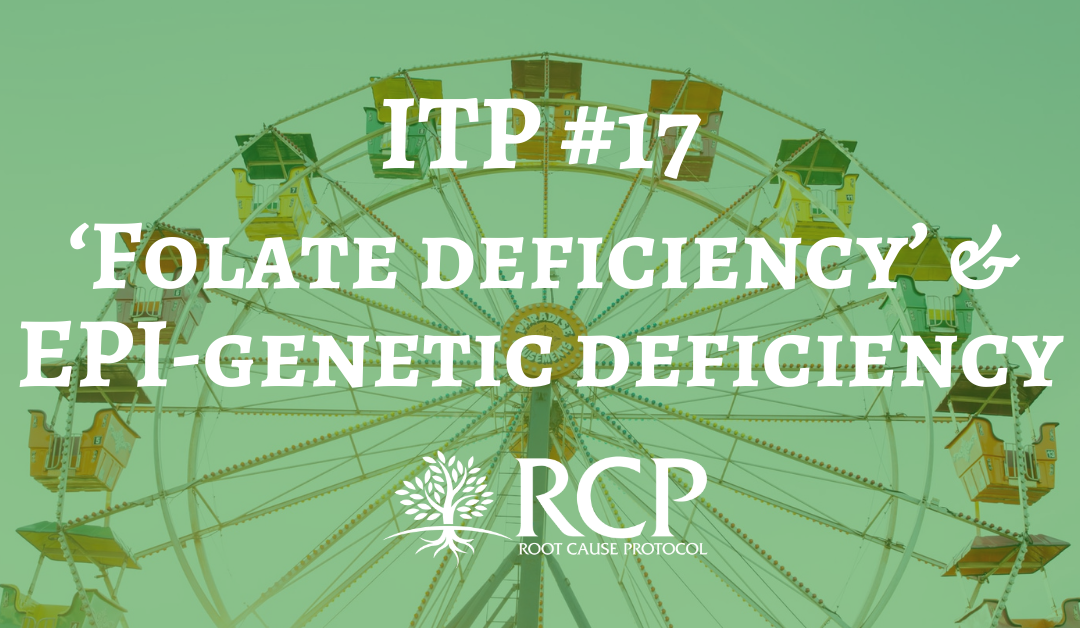 Iron Toxicity Post #17: Could 'Folate deficiency' be an EPI-genetic deficiency of bioavailable copper?