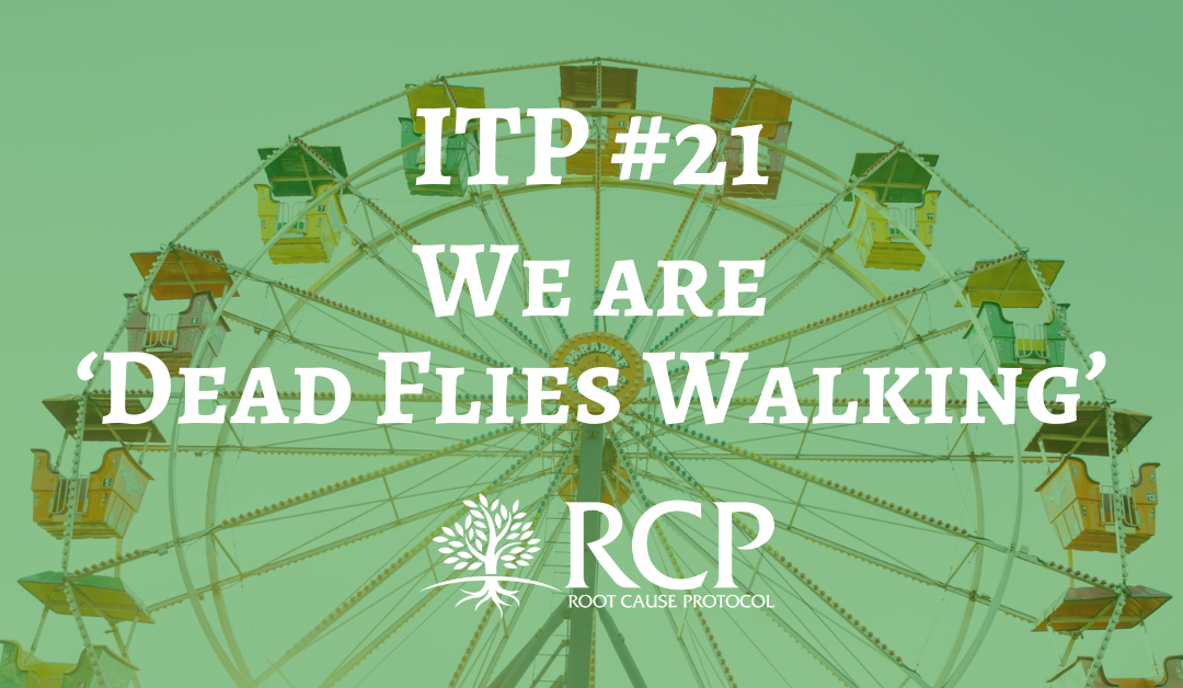 Iron Toxicity Post #21: We are 'Dead Flies Walking'