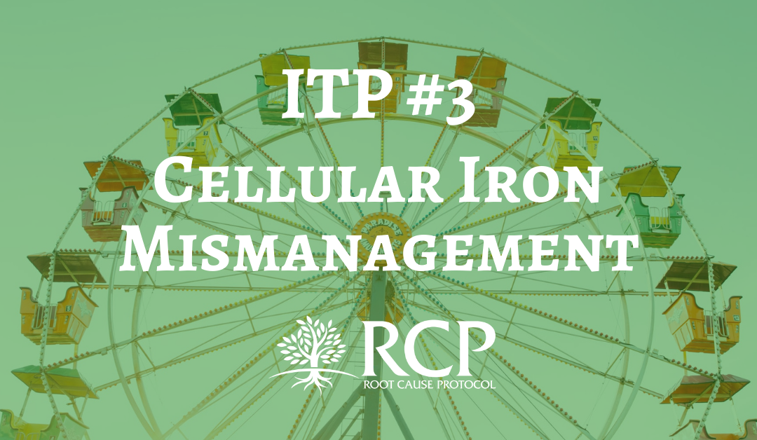 Iron Toxicity Post #3: The underlying pathogenic event in oxidative stress is cellular iron mismanagement