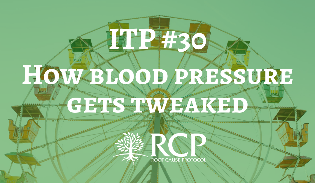 Iron Toxicity Post #30: How blood pressure gets tweaked