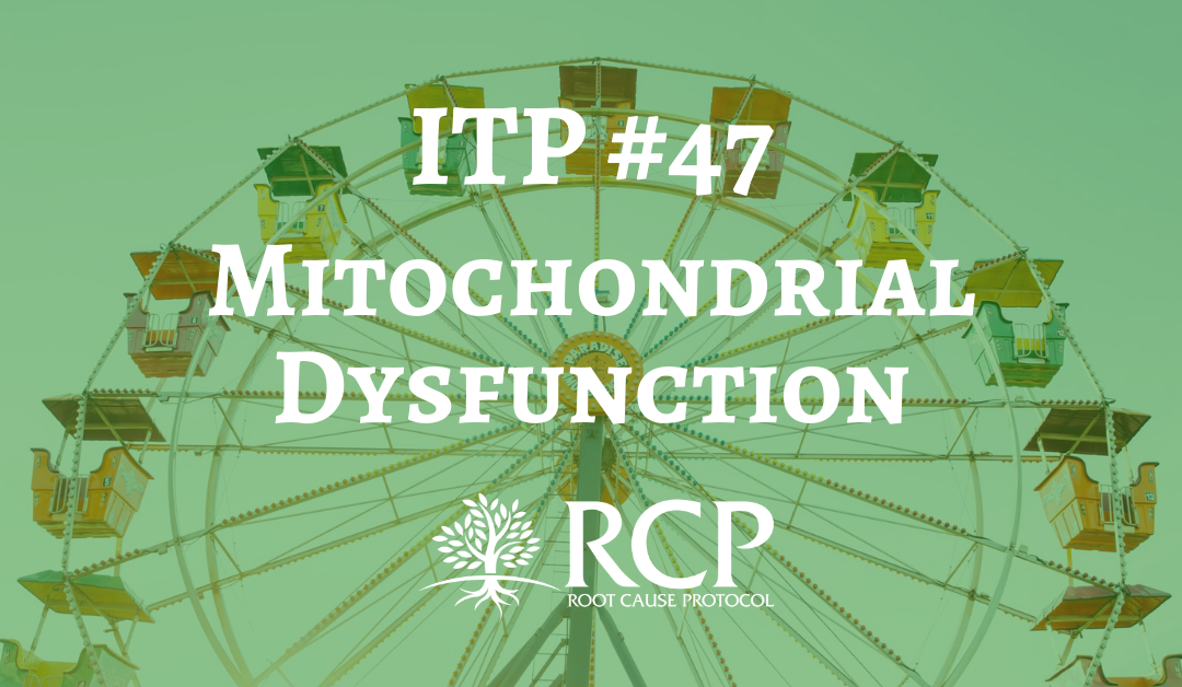 Iron Toxicity Post #47: The truth about the cause of mitochondrial dysfunction (as least as I see it)