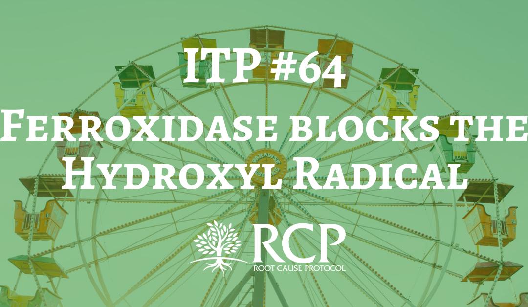 Iron Toxicity Post #64: Ferroxidase blocks the Hydroxyl Radical (OH*)