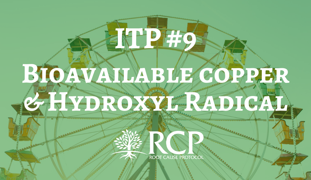 Iron Toxicity Post #9: Bioavailable copper is essential to reduce iron-induced hydroxyl radical (*OH)!